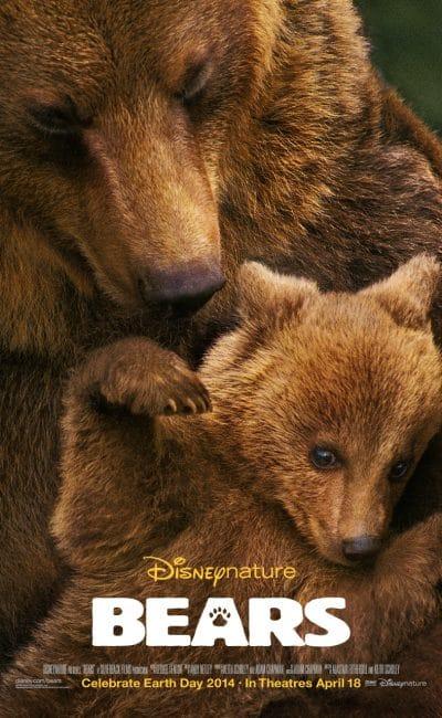 bears, disney nature